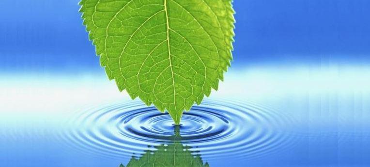 Clean Energy_1511891837094.JPG
