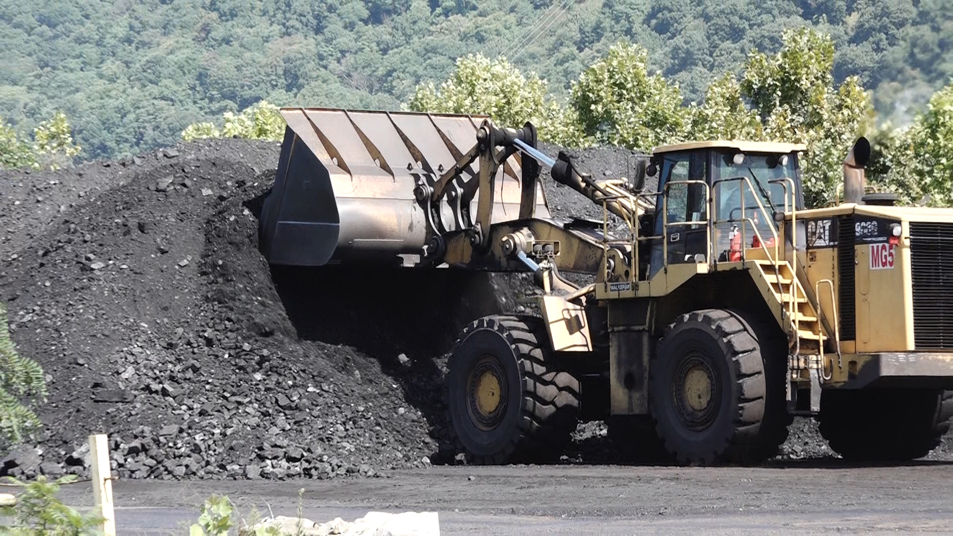 Coal Comeback 1_1511995566299.jpg