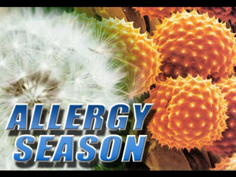 allergy+season5_1524485498049.jpg