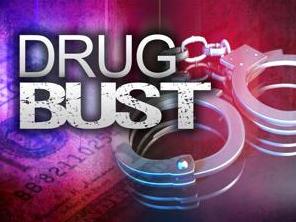 drug bust_1529661713520.PNG.jpg