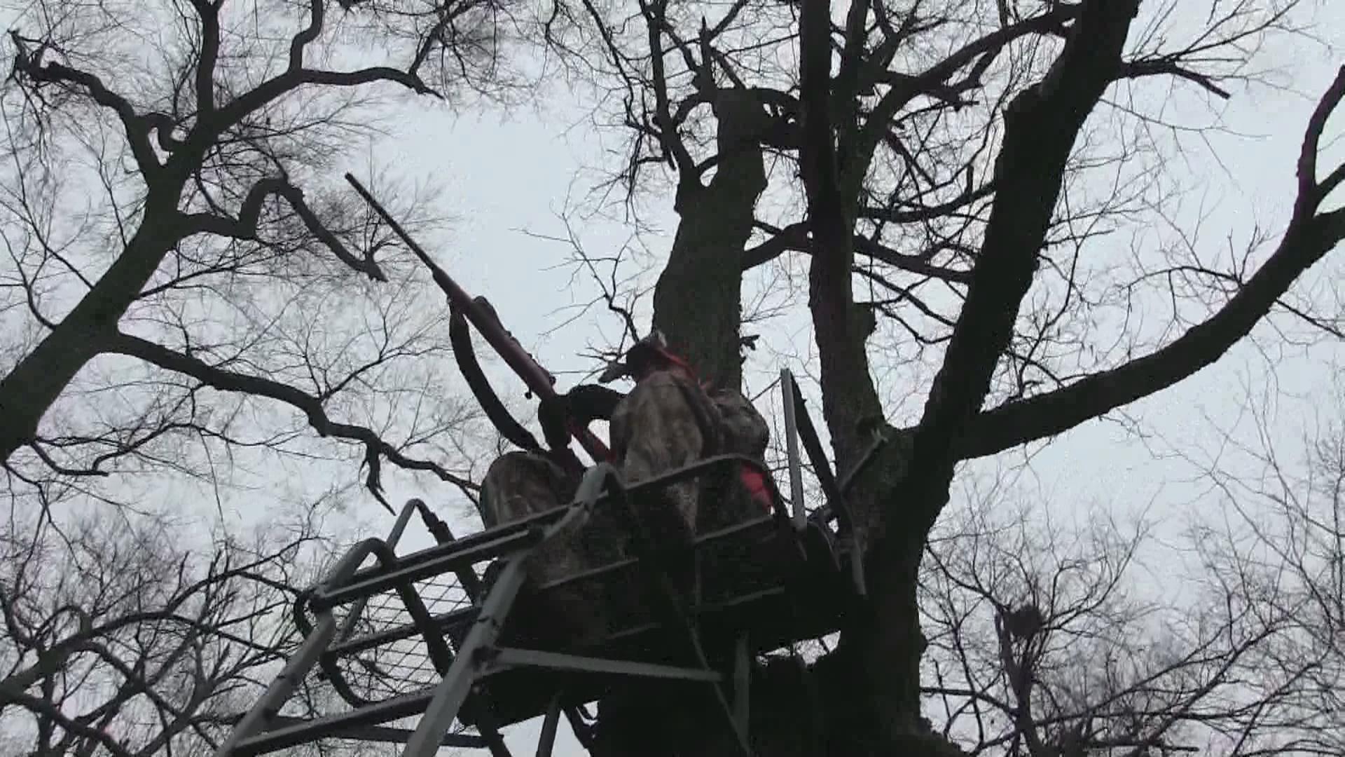 treestand_1538171136301.jpg