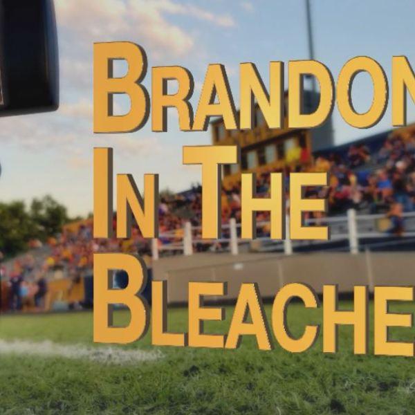 In the Bleachers Logo.jpg