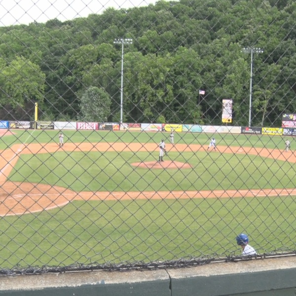 Minor League Baseball.jpg